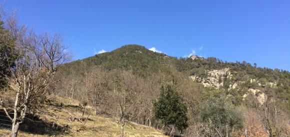 Suite avec spa privatif, vue sur les Alpes