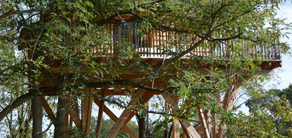 Chateau dans les arbres, prés de Bordeaux