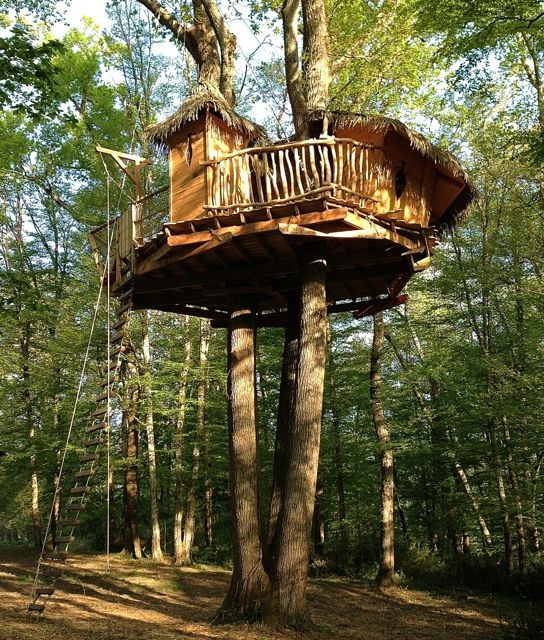 Cabane dans un arbre perch e 9 m tres pompignac introuvable - Plan cabane dans les arbres ...