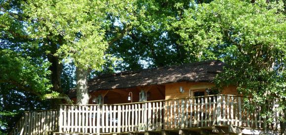 Cabane dans les arbres et son spa privatif, Chalais