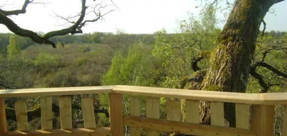 Cabane dans les arbres, terrasse en duplex, Chalais