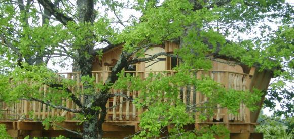 Cabane dans un arbre au dessus d'un lac, Chalais