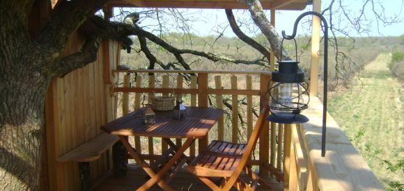 Cabane dans un arbre vue sur la Brenne, Chalais