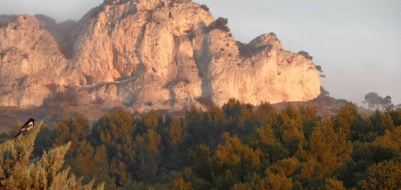 Bastide avec SPA privatif, au pied du Luberon